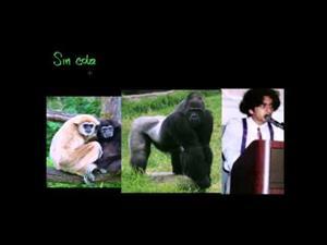 Aclaración sobre los monos (Khan Academy Español)