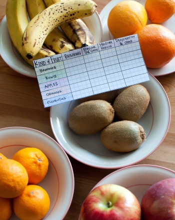 Rotting Fruit! Which Fruits Rot the Fastest, the Slowest? How do We Explain the Differences?