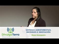 Sistemas agroforestais, incendios e innovación