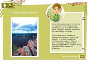 Ecosistema, factores abióticos. Biología y Geología 3º ciclo de Primaria