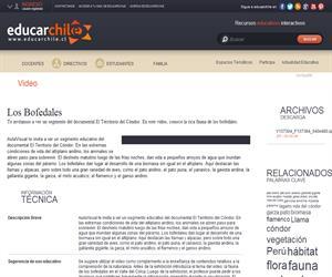 Los Bofedales (Educarchile)