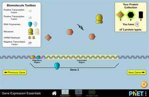 Expresión génica - Fundamentos