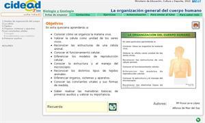 La organización general del cuerpo humano (cidead)