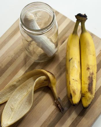 Do Bananas Give Birth to Maggots?