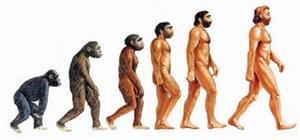 Becoming Human, quiénes somos como especie y de dónde venimos