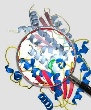 Laboratorio de análisis y control de calidad. Biotecnología