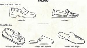 Calzados (Diccionario visual)
