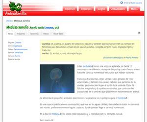 Medusa aurelia (Aurelia aurita)