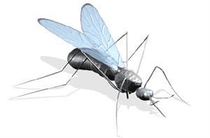 ¿Qué es la malaria?