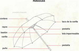 Paraguas (Diccionario visual)
