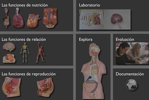"""El cuerpo humano a sólo un """"clic"""""""