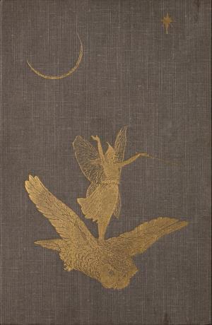 The grey fairy book (International Children's Digital Library)