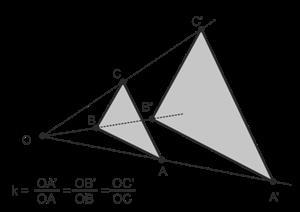 Homotecia (EnclicloAbierta)
