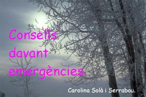 Consells davant emergències
