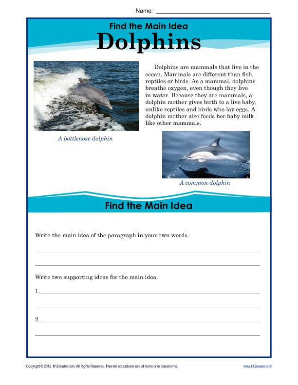 Find the Main Idea: Dolphins