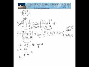 Matriz inversa y parámetro