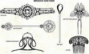 Brooch and hair  (Visual Dictionary)