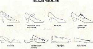 Calzado para mujer (Diccionario visual)