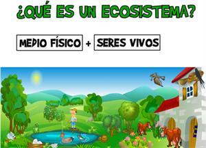 ¿Qué es un ecosistema? (catedu.es)