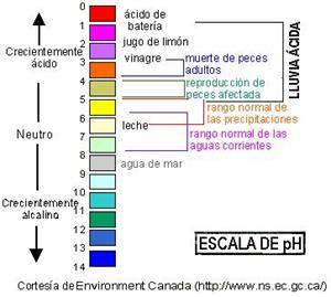 Efectos de la lluvia ácida (unizar.es)