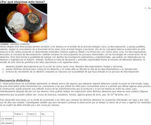 Descomposición y conservación de alimentos
