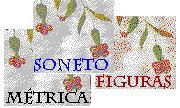 Actividades de literatura castellana: métrica , figuras retóricas y tópicos literarios