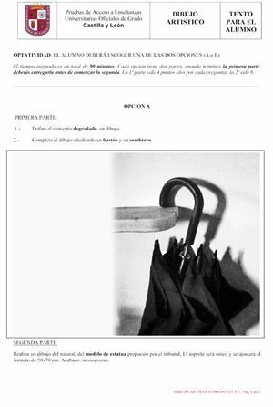 Examen de Selectividad: Dibujo artístico. Castilla y León. Convocatoria Junio 2013