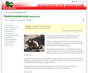 Vizcacha de montaña sureña (Lagidium viscacia)