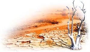 Cambio Climático (BBC)