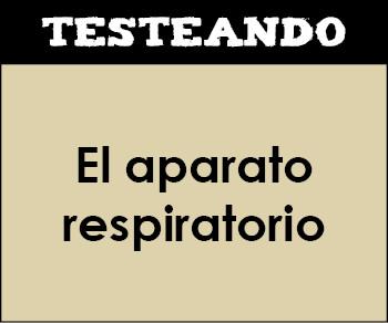 El aparato respiratorio. 1º Bachillerato - Biología (Testeando)