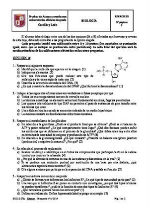 Examen de Selectividad: Biología. Castilla y León. Convocatoria Junio 2014