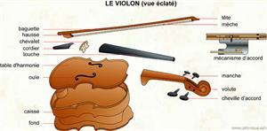 Le violon (vue éclatée) (Dictionnaire Visuel)