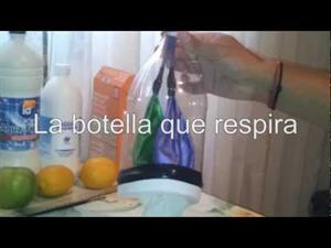La Botella con Pulmones (Experimentos para niños)