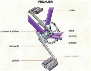 Pédalier (Dictionnaire Visuel)