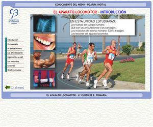 El cuerpo humano. El aparato locomotor – Conocimiento del medio – 3º Ciclo de E. Primaria – Unidad didáctica.