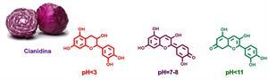 La química que nos rodea. La col lombarda como indicador ácido base.