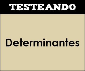 Determinantes. 2º Bachillerato - Matemáticas (Testeando)