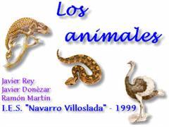 Los animales - 2