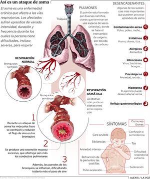 Así es un ataque de asma (Infografía de La Voz de Galicia)