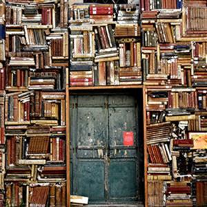 Libros: ¿apreciados o temidos?