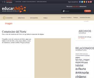 Cometocino del Norte (Educarchile)