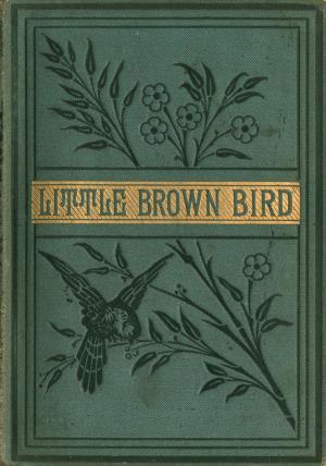 The little brown bird (International Children's Digital Library)