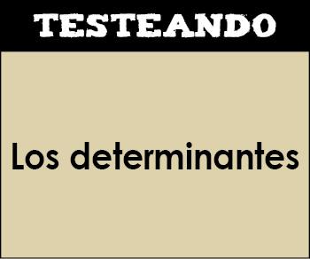 Los determinantes. 4º Primaria - Lengua (Testeando)
