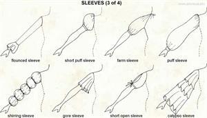 Sleeves 3  (Visual Dictionary)