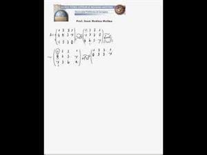 Discusión del rango de una matriz con parámetros