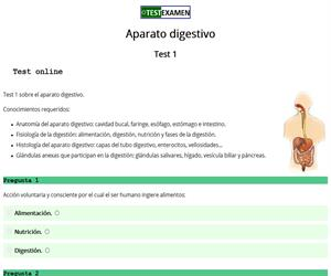 Test (1): aparato digestivo