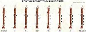 Position des notes sur une flûte (Dictionnaire Visuel)
