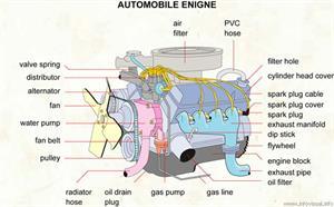 Automobile engine  (Visual Dictionary)