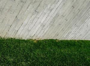 La pereza no existe, pero las barreras invisibles sí. Por Devon Price (Medium)