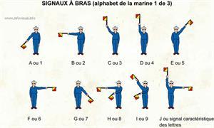 Signaux à bras (1) (Dictionnaire Visuel)